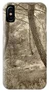 The Dance Of The Forest IPhone Case