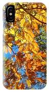 The Dazzling Colors Of Fall IPhone Case