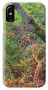 The Deep Rainy In The Mysterious Forest IPhone Case
