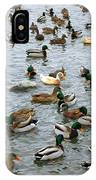 The Duck Pond IPhone Case