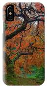 The Famous Tree At Portland Japanese Garden IPhone Case