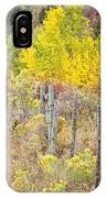 The Fence Line IPhone Case