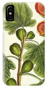 The Fig Tree IPhone Case