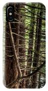 The Forest Combed By The Wind In The Lake IPhone Case