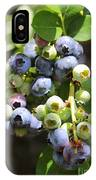 The Freshest Blueberries IPhone Case