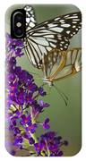 The Glasswing And A Friend  IPhone Case