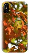 The Glory Of Autumn IPhone Case