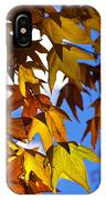 The Golden Hues Of Autumn  IPhone Case