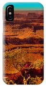 The Grand Canyon X IPhone Case