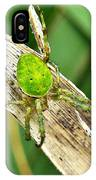 The Green Spider IPhone Case