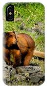 The Grizzly IPhone Case