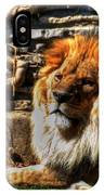 The King Lazy Boy At The Buffalo Zoo IPhone Case