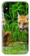 The Kits IPhone Case