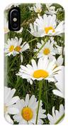 The Land Of White Daisies IPhone Case