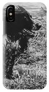 The Laughing Springer IPhone Case