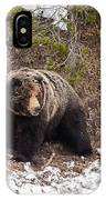 The Lehardy Boar IPhone Case