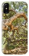 The Life Of Oaks - The Magical Trees Of The Los Osos Oak Reserve IPhone Case
