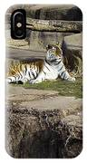 The Lounging Tiger 2 IPhone Case