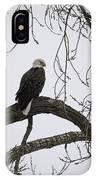 The Majestic Eagle IPhone Case