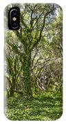 The Mysterious Forest - The Magical Trees Of The Los Osos Oak Reserve. IPhone Case