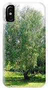 The Old Birch Tree IPhone Case