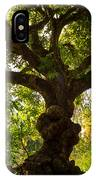 The Old Mango Tree IPhone Case