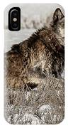 The Patriarch Alpha IPhone Case