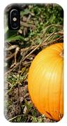 The Perfect Pumpkin In The Patch IPhone Case
