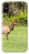 The Proud Elk IPhone Case