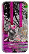 The Psychedelic Cat IPhone Case