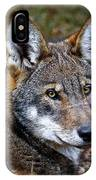The Red Wolf IPhone Case