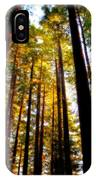 The Redwoods Of Florence Keller Park IPhone Case