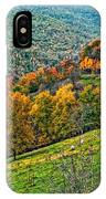 The Road To Glady Wv IPhone Case