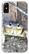 The Sandcrab - Seeking Shelter IPhone Case