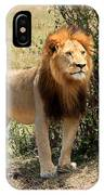 King Of The Savannah IPhone Case