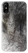 The Silver Gleam IPhone Case