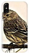 The Sparrow  IPhone Case