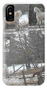 The Stallion Lives In The Country IPhone Case