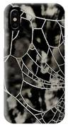 The Tangled Web IPhone Case
