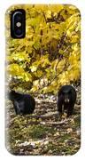 The Three Bears IPhone Case
