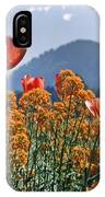 The Tulips In Bloom IPhone Case
