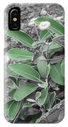 The Untouchable Plant IPhone Case