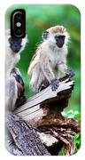 The Vervet Monkey. Lake Manyara. Tanzania. Africa IPhone Case
