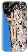 The Woodpecker Is In IPhone Case