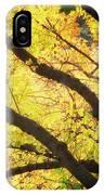 Then Autumn Arrives 03 IPhone Case