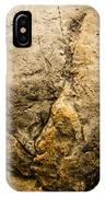 Theropod Dinosaur Footprint IPhone Case