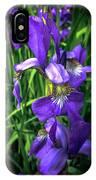 Colors Of Iris IPhone Case