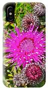 Thistle In Saint Mary's Ecological Reserve-newfoundland IPhone Case