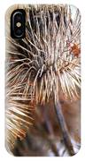Thistle Seedheads IPhone Case