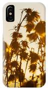 Thistles In The Sunset IPhone Case